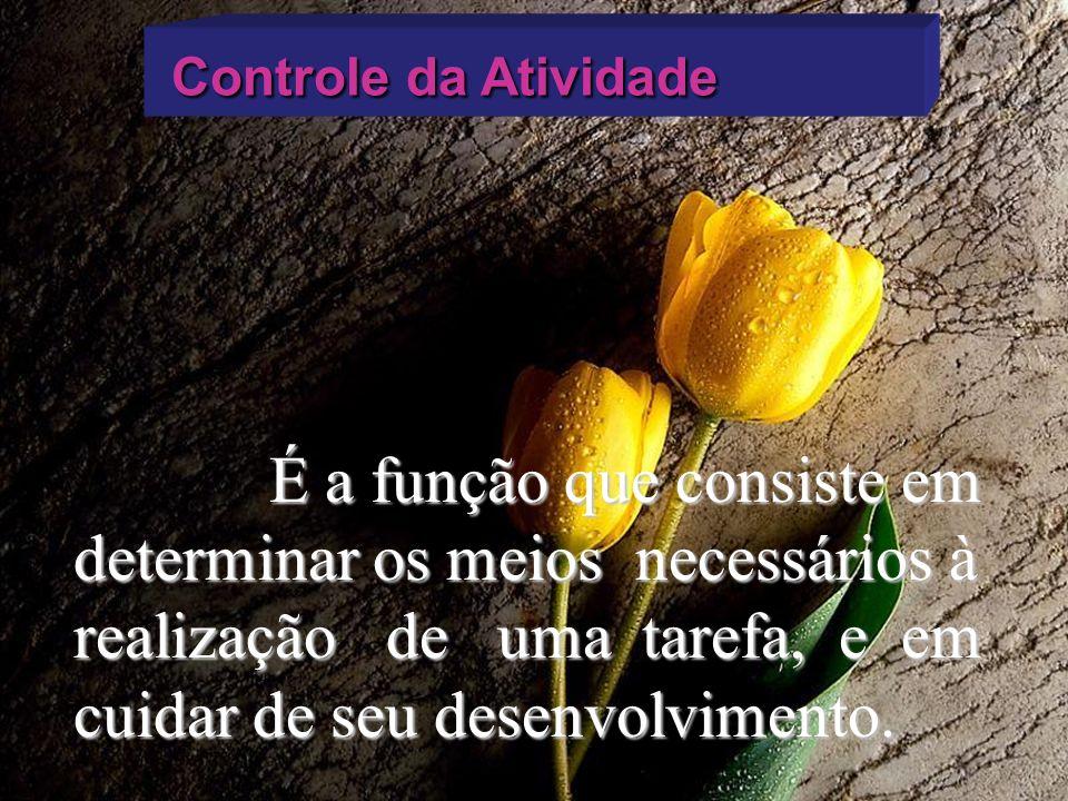 Controle da Atividade Controle da Atividade É a função que consiste em determinar os meios necessários à realização de uma tarefa, e em cuidar de seu