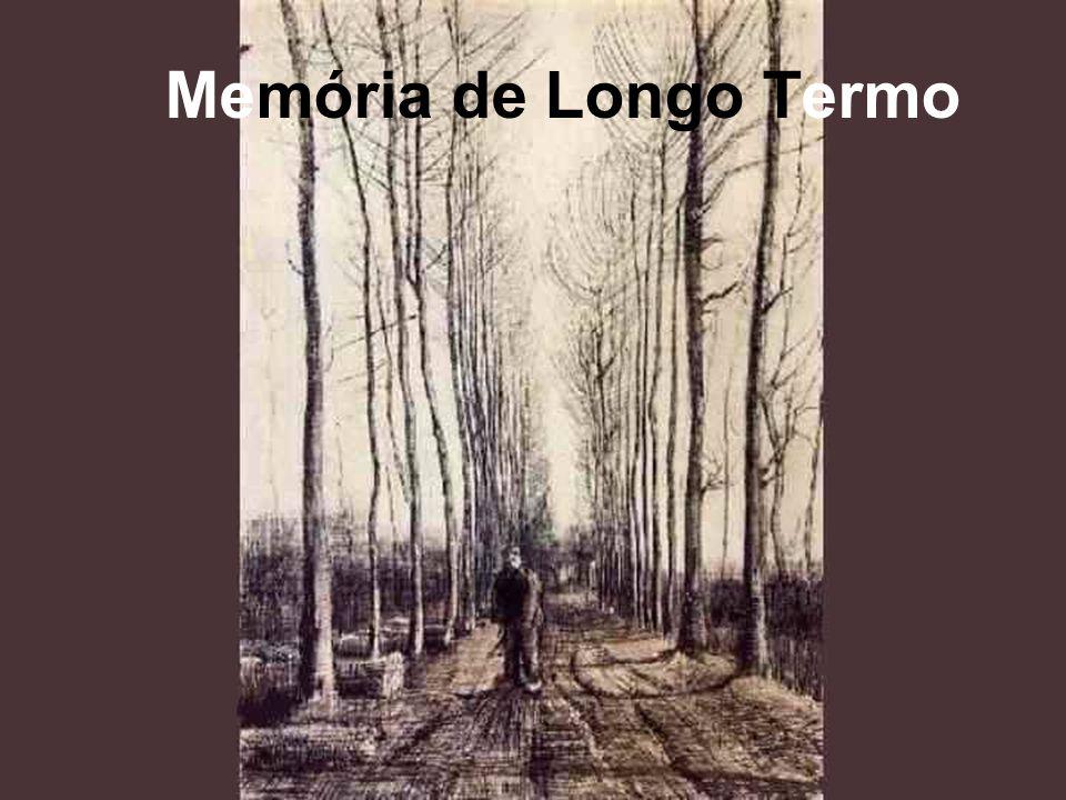 Memória de Longo Termo