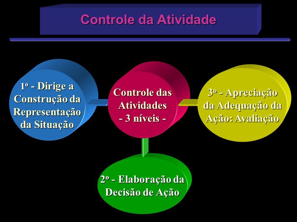 Controle da Atividade 1 o - Dirige a Construção da Representação da Situação 2 o - Elaboração da Decisão de Ação Controle das Atividades - 3 níveis -