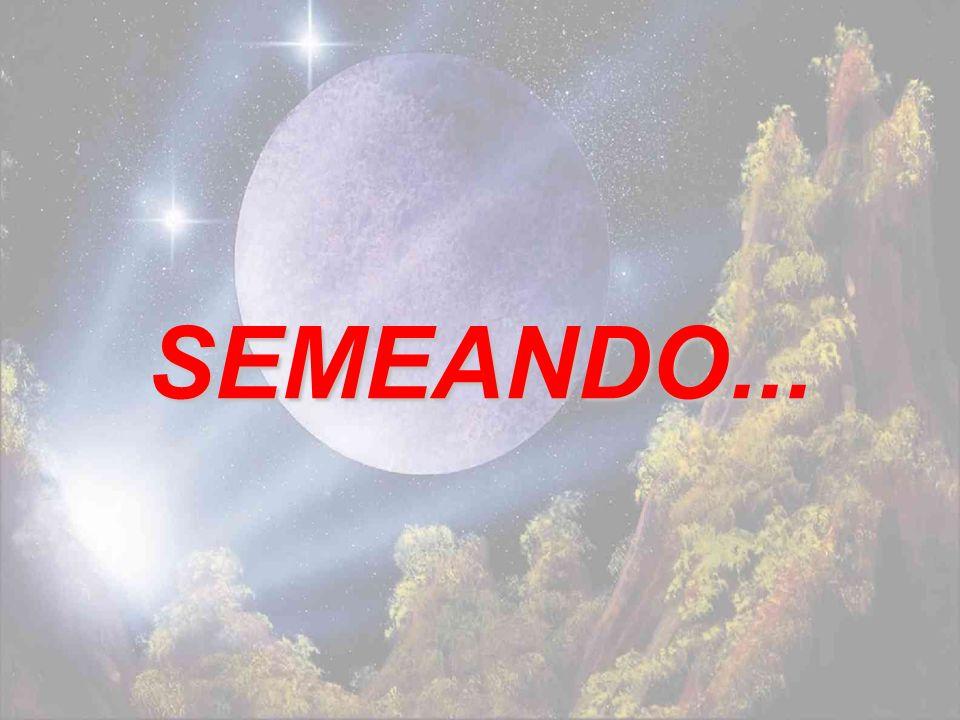 SEMEANDO...