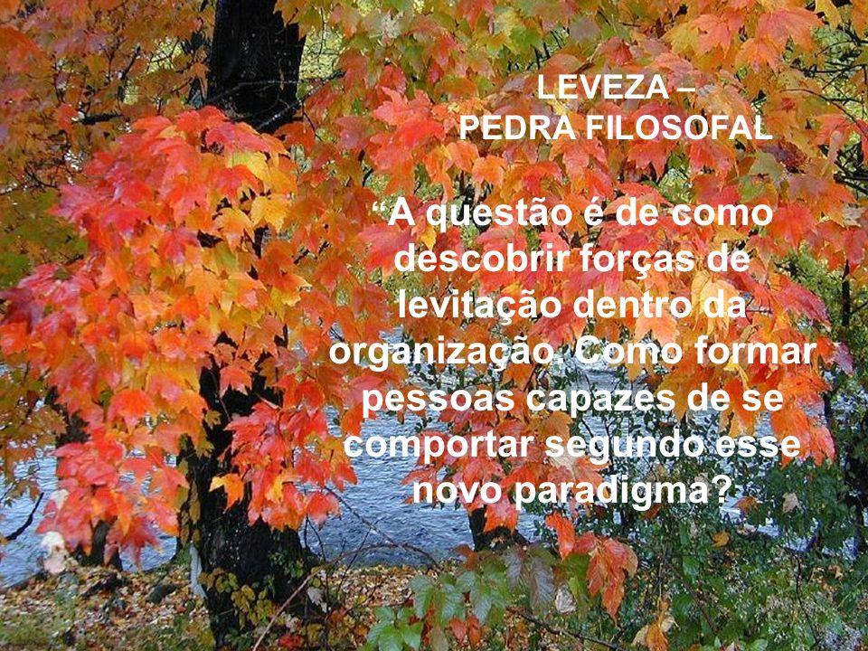 LEVEZA – PEDRA FILOSOFAL A questão é de como descobrir forças de levitação dentro da organização. Como formar pessoas capazes de se comportar segundo