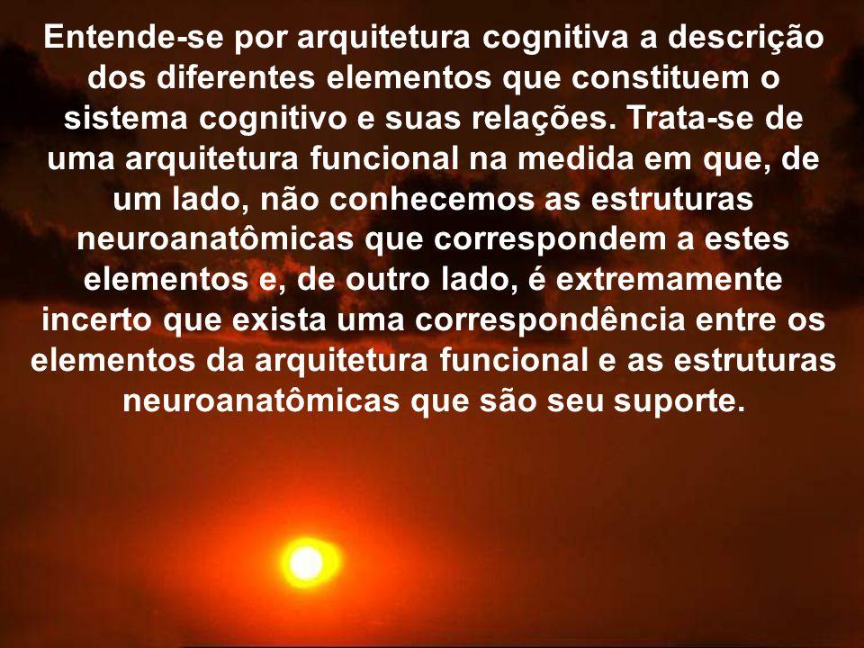 Entende-se por arquitetura cognitiva a descrição dos diferentes elementos que constituem o sistema cognitivo e suas relações. Trata-se de uma arquitet