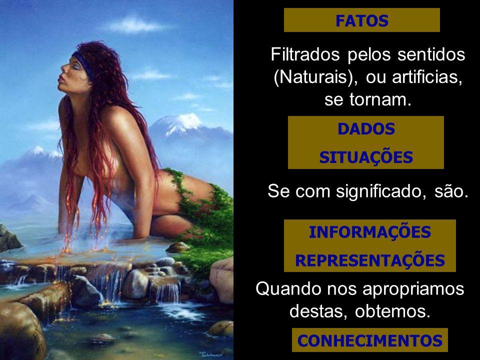 DADOS SITUAÇÕES INFORMAÇÕES REPRESENTAÇÕES CONHECIMENTOS FATOS Filtrados pelos sentidos (Naturais), ou artificias, se tornam. Se com significado, são.