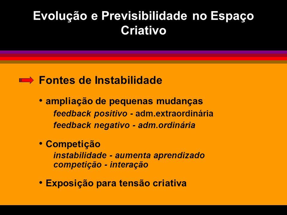 Evolução e Previsibilidade no Espaço Criativo Fontes de Instabilidade ampliação de pequenas mudanças feedback positivo - adm.extraordinária feedback n