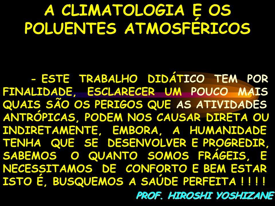 A CLIMATOLOGIA E OS POLUENTES ATMOSFÉRICOS - ESTE TRABALHO DIDÁTICO TEM POR FINALIDADE, ESCLARECER UM POUCO MAIS QUAIS SÃO OS PERIGOS QUE AS ATIVIDADE