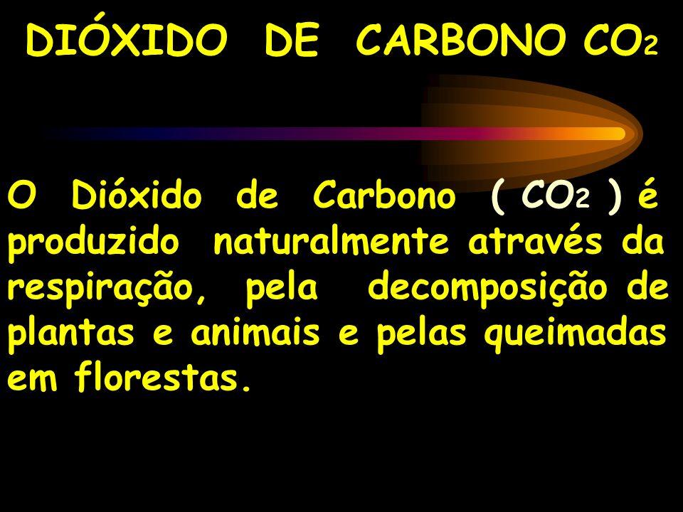 DIÓXIDO DE CARBONO CO 2 O Dióxido de Carbono ( CO 2 ) é produzido naturalmente através da respiração, pela decomposição de plantas e animais e pelas q
