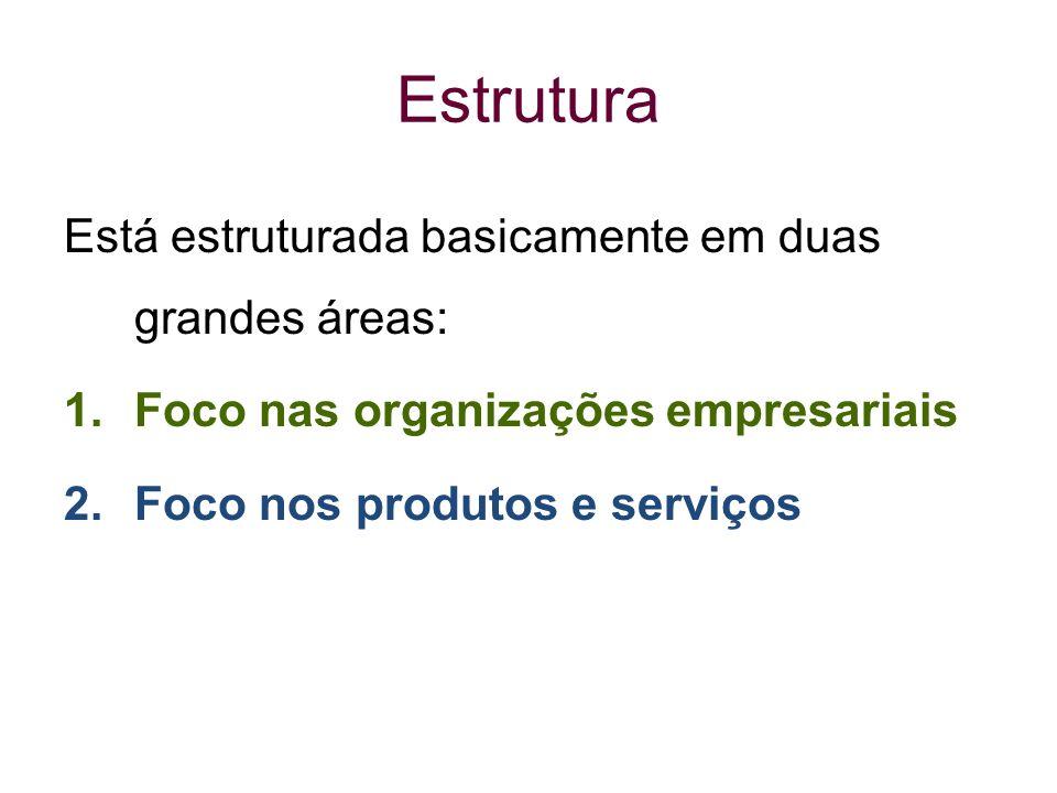 Estrutura Está estruturada basicamente em duas grandes áreas: 1.Foco nas organizações empresariais 2.Foco nos produtos e serviços