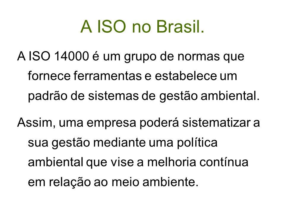 A ISO no Brasil. A ISO 14000 é um grupo de normas que fornece ferramentas e estabelece um padrão de sistemas de gestão ambiental. Assim, uma empresa p