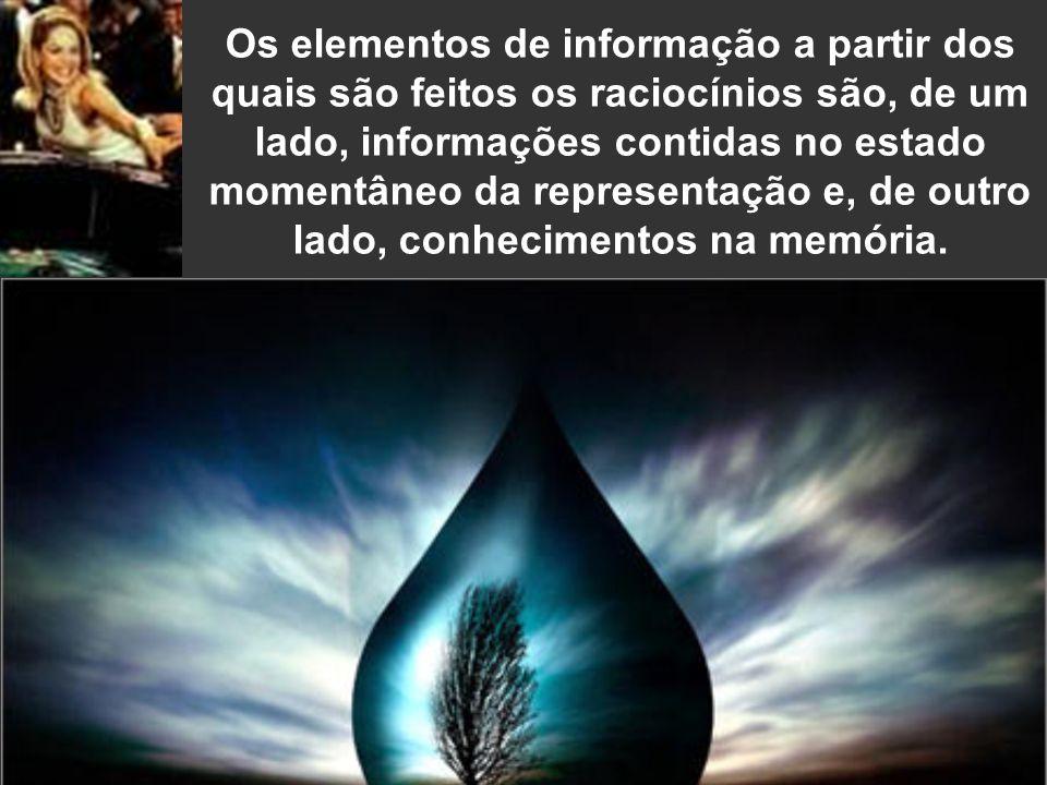 Os elementos de informação a partir dos quais são feitos os raciocínios são, de um lado, informações contidas no estado momentâneo da representação e,