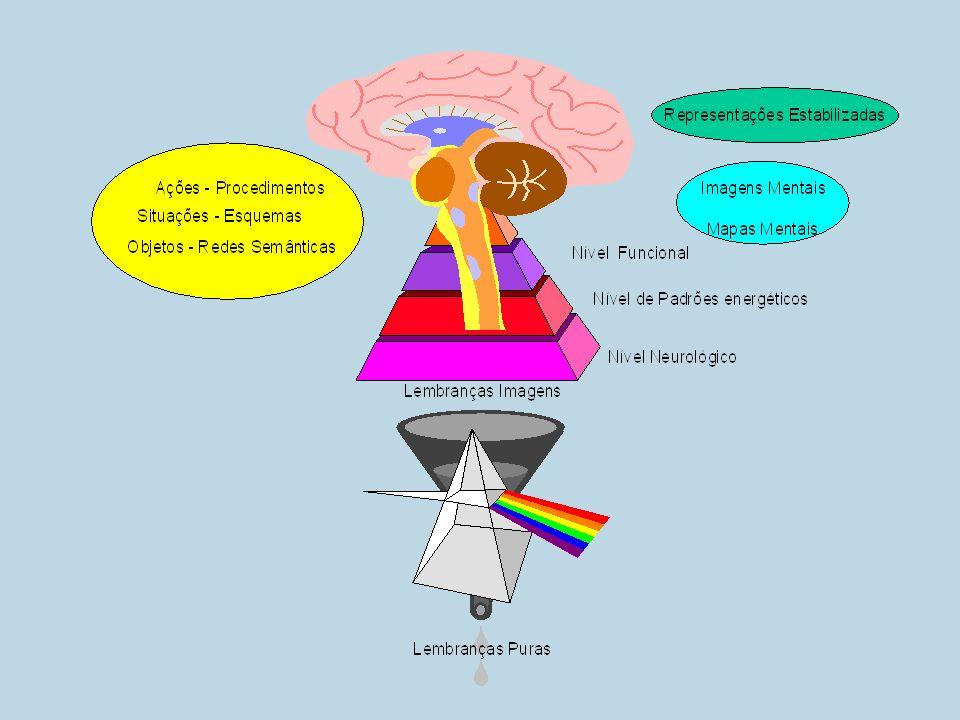 Tipologia de Jung o valor psicológico é simplesmente estabelecido por sua força determinante que se manifesta em certos efeitos (produções) psíquicos.(JUNG, 1991, pág.