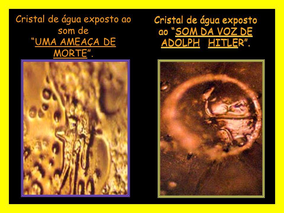 Cristal de água exposto ao SOM DA VOZ DE ADOLPH HITLER.