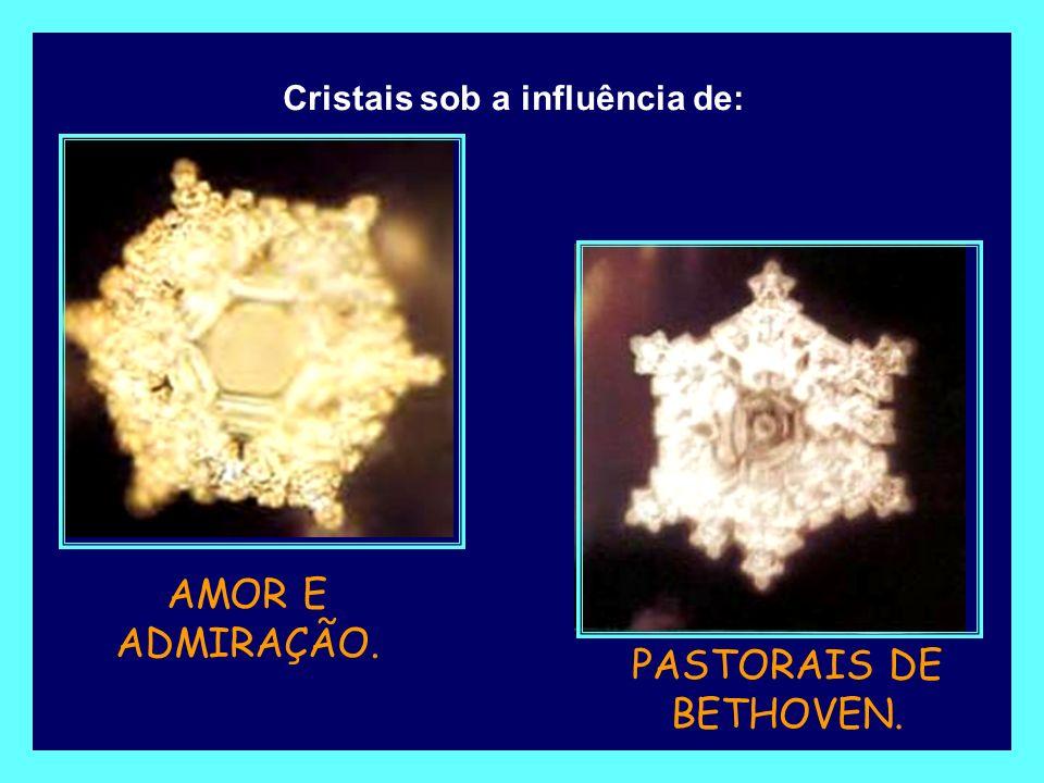 Cristal de água exposto ao SOM DA VOZ DE ADOLPH HITLER. Cristal de água exposto ao som deUMA AMEAÇA DE MORTE.
