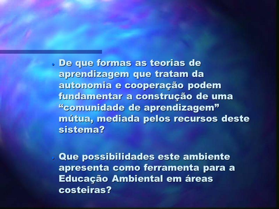 3. Perguntas de Pesquisa Qual o nível de conhecimento básico de informática necessário para que um grupo de aprendentes opere dentro de um ambiente de