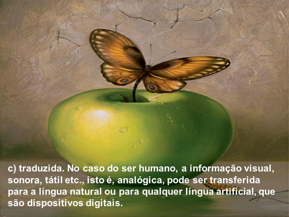 c) traduzida. No caso do ser humano, a informação visual, sonora, tátil etc., isto é, analógica, pode ser transferida para a língua natural ou para qu