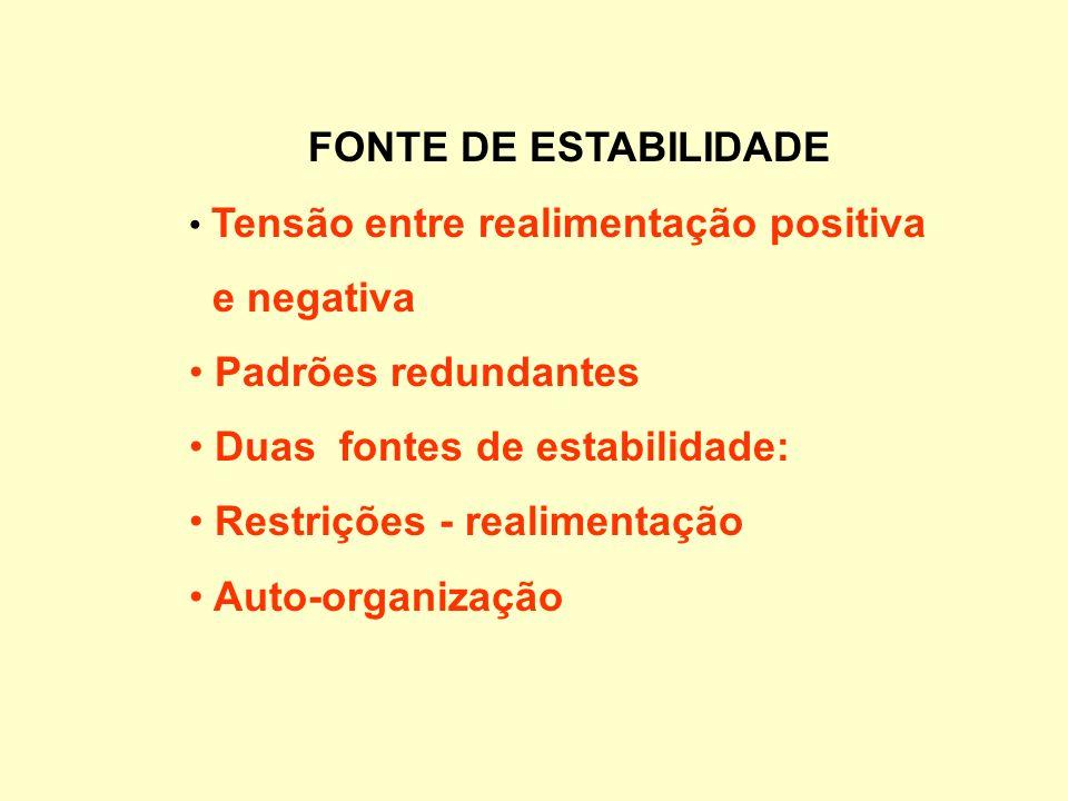 FONTE DE ESTABILIDADE Tensão entre realimentação positiva e negativa Padrões redundantes Duas fontes de estabilidade: Restrições - realimentação Auto-