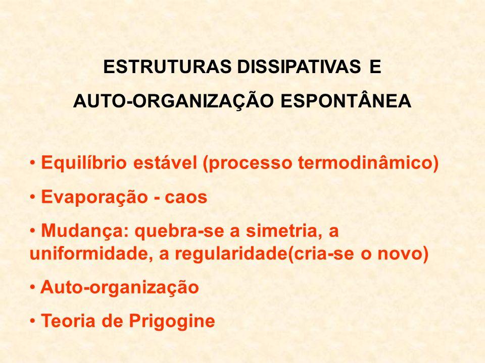ESTRUTURAS DISSIPATIVAS E AUTO-ORGANIZAÇÃO ESPONTÂNEA Equilíbrio estável (processo termodinâmico) Evaporação - caos Mudança: quebra-se a simetria, a u