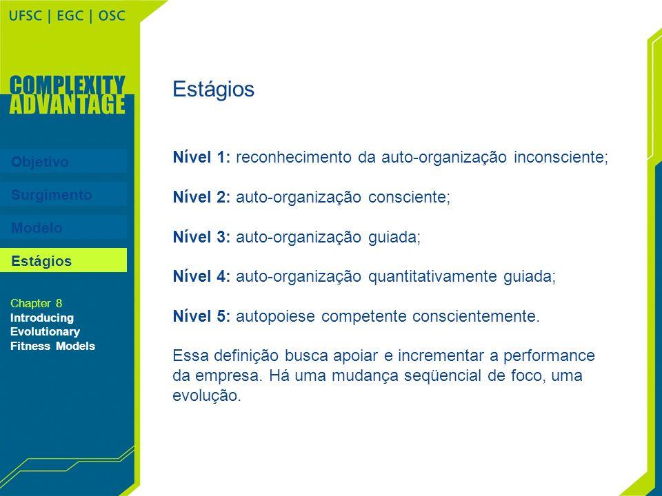 Estágios Nível 1: reconhecimento da auto-organização inconsciente; Nível 2: auto-organização consciente; Nível 3: auto-organização guiada; Nível 4: au