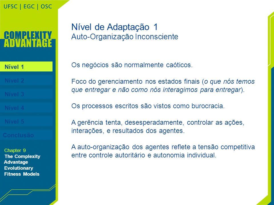Nível 1 Nível 2 Nível 3 Nível 4 Nível 5 Conclusão Chapter 9 The Complexity Advantage Evolutionary Fitness Models Nível de Adaptação 1 Auto-Organização
