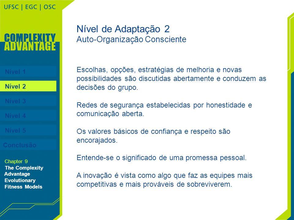 Nível 1 Nível 2 Nível 3 Nível 4 Nível 5 Chapter 9 The Complexity Advantage Evolutionary Fitness Models Nível de Adaptação 2 Auto-Organização Conscient