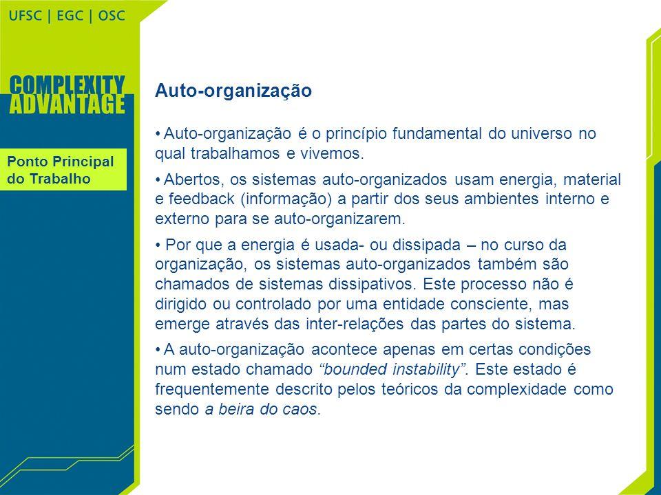 Ponto Principal do Trabalho Auto-organização Auto-organização é o princípio fundamental do universo no qual trabalhamos e vivemos. Abertos, os sistema