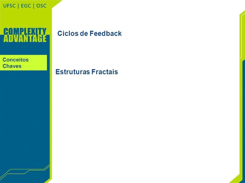 Conceitos Chaves Ciclos de Feedback Estruturas Fractais