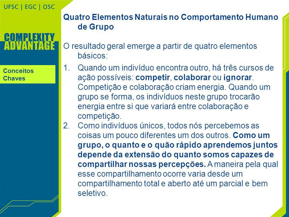 Conceitos Chaves Quatro Elementos Naturais no Comportamento Humano de Grupo O resultado geral emerge a partir de quatro elementos básicos: 1.Quando um
