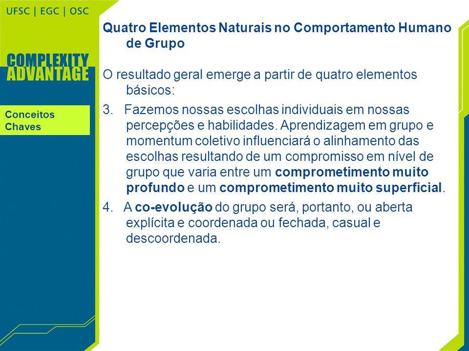 Conceitos Chaves Quatro Elementos Naturais no Comportamento Humano de Grupo O resultado geral emerge a partir de quatro elementos básicos: 3. Fazemos