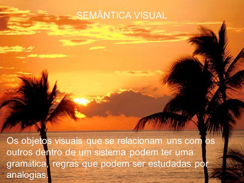 SEMÂNTICA VISUAL Um sistema é conhecido como uma linguagem visual que, por ser uma linguagem, tamb é m possui semântica e sintaxe tal como a linguagem escrita.