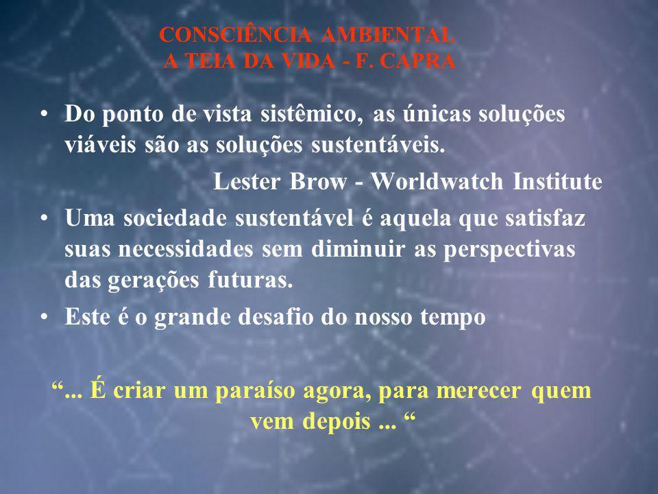 CONSCIÊNCIA AMBIENTAL A TEIA DA VIDA - F. CAPRA Do ponto de vista sistêmico, as únicas soluções viáveis são as soluções sustentáveis. Lester Brow - Wo