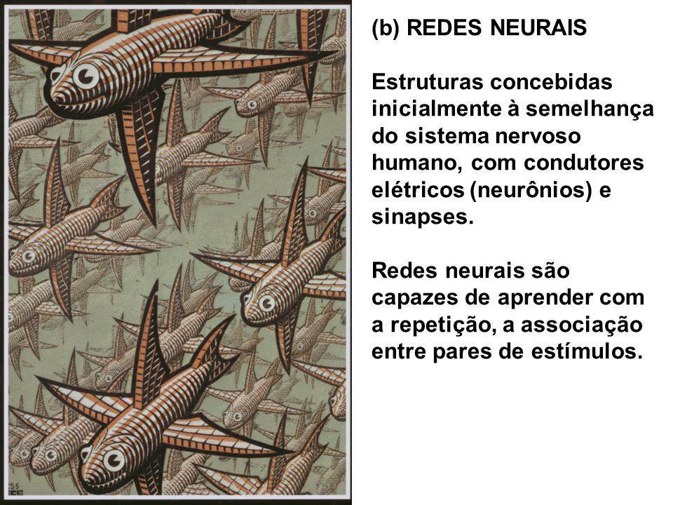 (b) REDES NEURAIS Estruturas concebidas inicialmente à semelhança do sistema nervoso humano, com condutores elétricos (neurônios) e sinapses. Redes ne