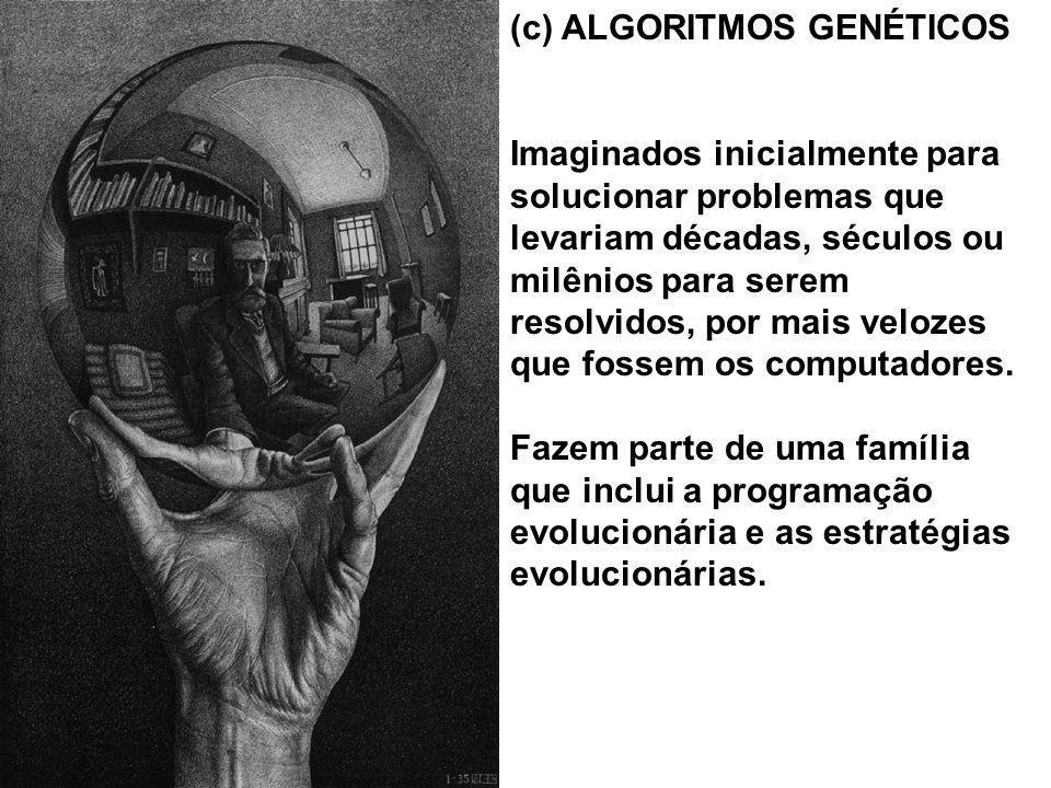 (c) ALGORITMOS GENÉTICOS Imaginados inicialmente para solucionar problemas que levariam décadas, séculos ou milênios para serem resolvidos, por mais v