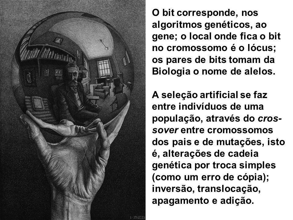 O bit corresponde, nos algoritmos genéticos, ao gene; o local onde fica o bit no cromossomo é o lócus; os pares de bits tomam da Biologia o nome de al