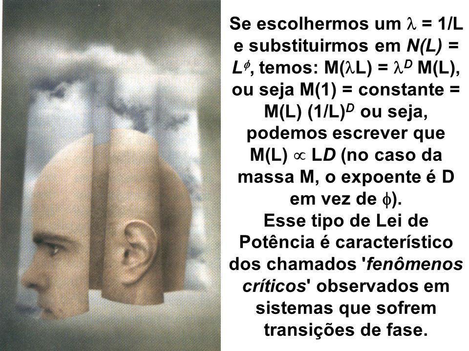 Se escolhermos um = 1/L e substituirmos em N(L) = L, temos: M( L) = D M(L), ou seja M(1) = constante = M(L) (1/L) D ou seja, podemos escrever que M(L)