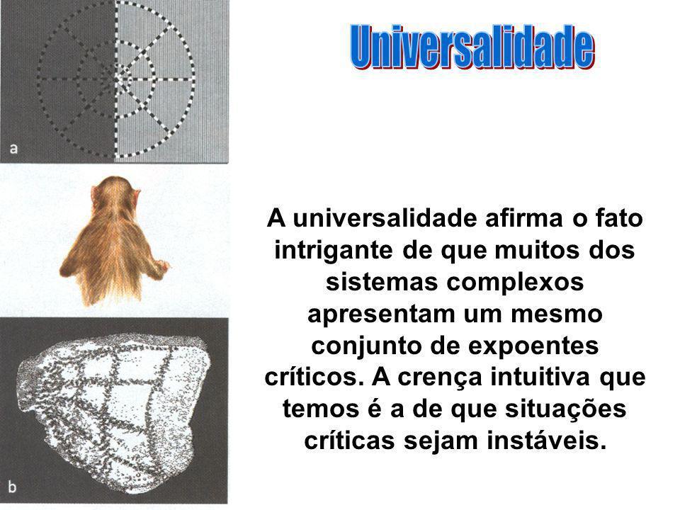 A universalidade afirma o fato intrigante de que muitos dos sistemas complexos apresentam um mesmo conjunto de expoentes críticos. A crença intuitiva