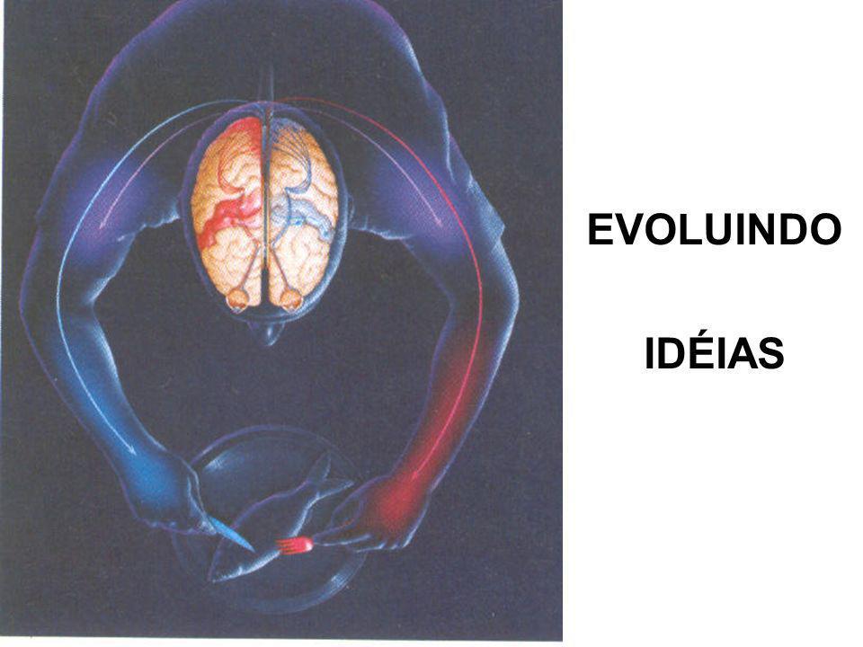 EVOLUINDO IDÉIAS