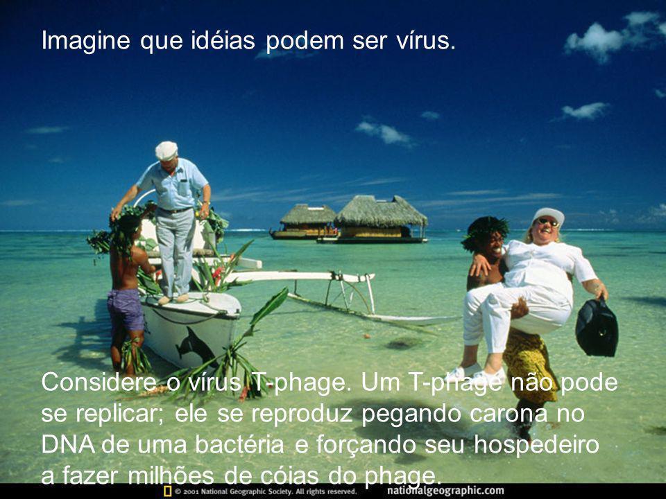 Imagine que idéias podem ser vírus. Considere o vírus T-phage. Um T-phage não pode se replicar; ele se reproduz pegando carona no DNA de uma bactéria