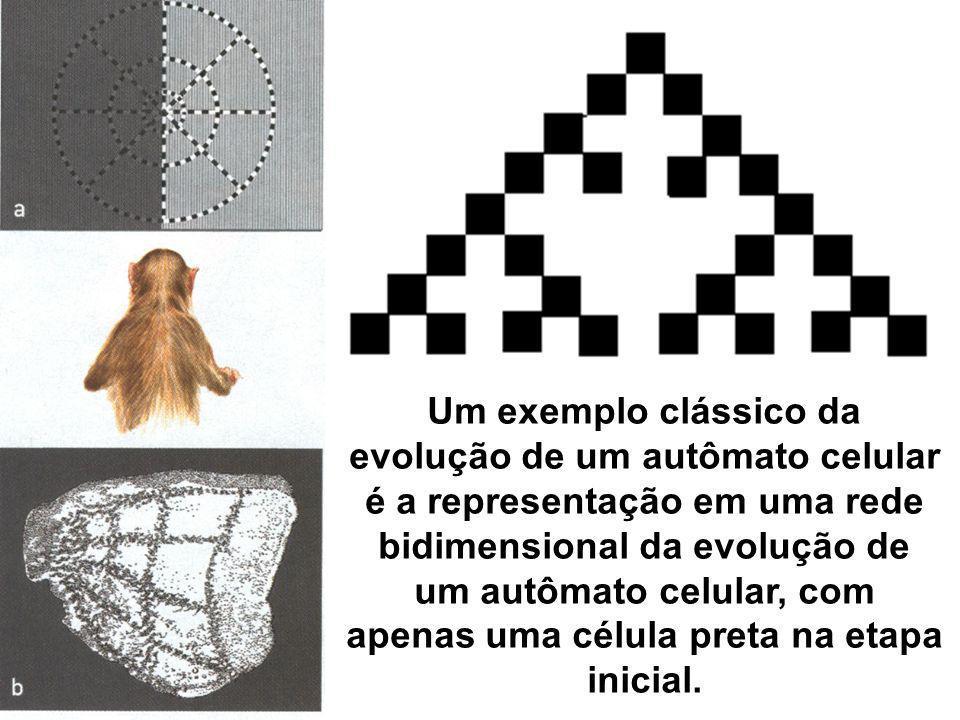Um exemplo clássico da evolução de um autômato celular é a representação em uma rede bidimensional da evolução de um autômato celular, com apenas uma