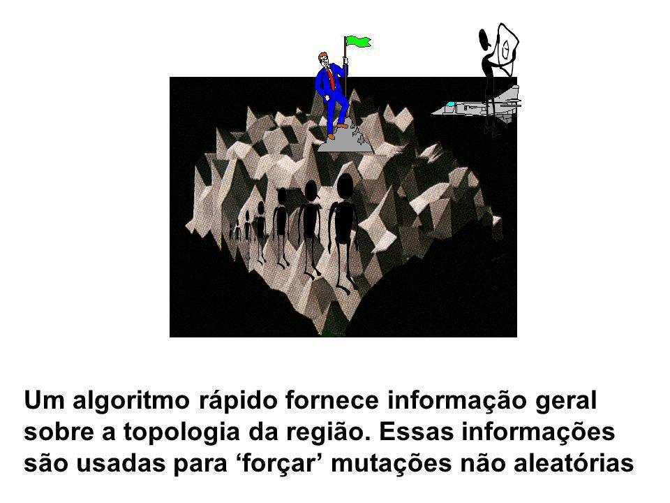 Um algoritmo rápido fornece informação geral sobre a topologia da região. Essas informações são usadas para forçar mutações não aleatórias