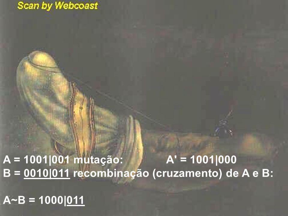 A = 1001|001 mutação: A' = 1001|000 B = 0010|011 recombinação (cruzamento) de A e B: A~B = 1000|011