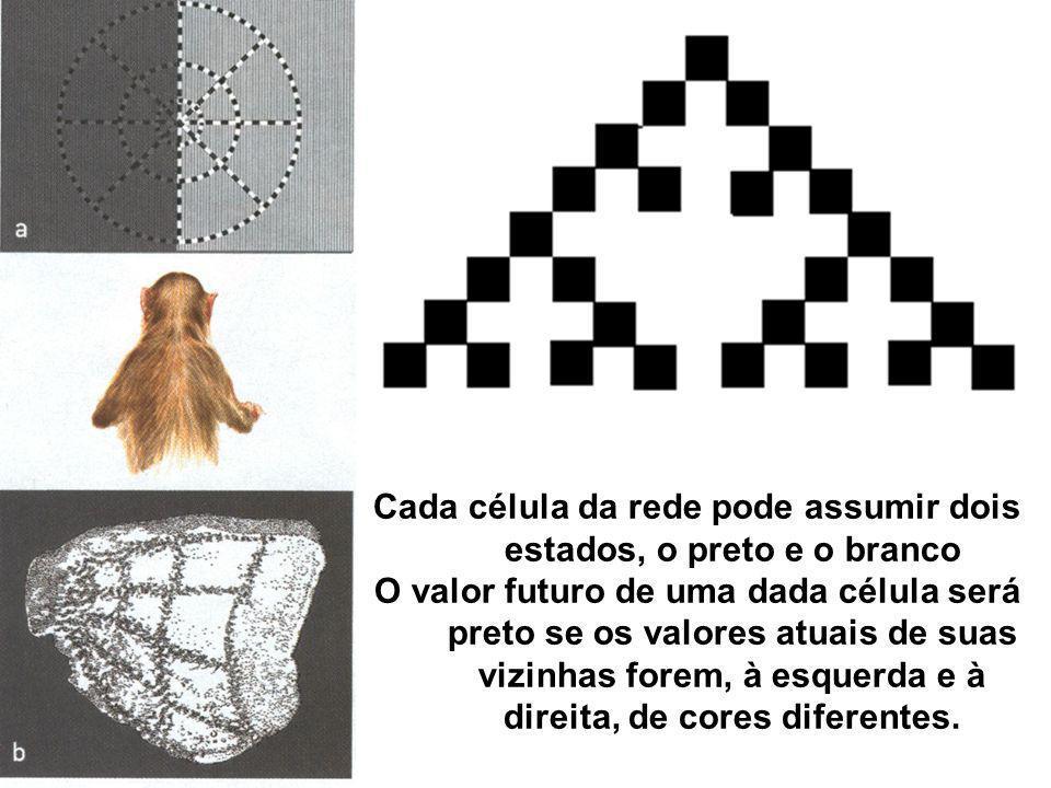 Cada célula da rede pode assumir dois estados, o preto e o branco O valor futuro de uma dada célula será preto se os valores atuais de suas vizinhas f