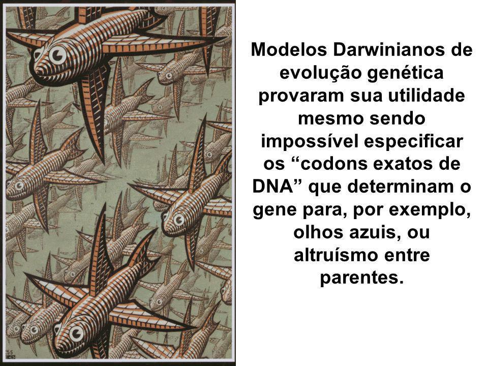 Modelos Darwinianos de evolução genética provaram sua utilidade mesmo sendo impossível especificar os codons exatos de DNA que determinam o gene para,