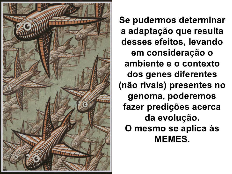 Se pudermos determinar a adaptação que resulta desses efeitos, levando em consideração o ambiente e o contexto dos genes diferentes (não rivais) prese