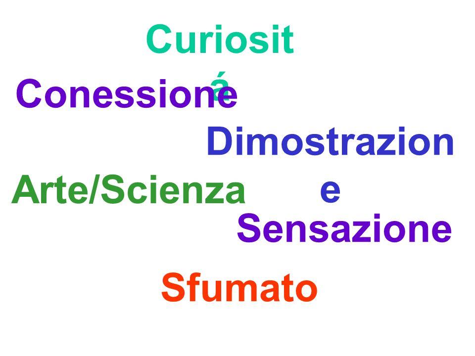 Curiosit á Dimostrazion e Sensazione Sfumato Arte/Scienza Conessione