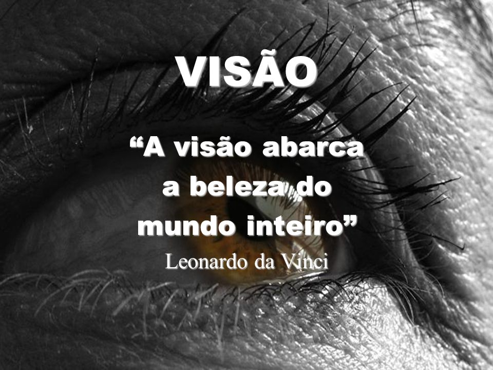 VISÃO A visão abarca a beleza do mundo inteiro Leonardo da Vinci