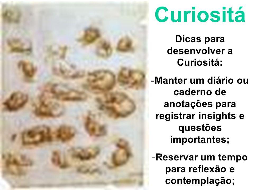 Curiositá Dicas para desenvolver a Curiositá: -Manter um diário ou caderno de anotações para registrar insights e questões importantes; -Reservar um t