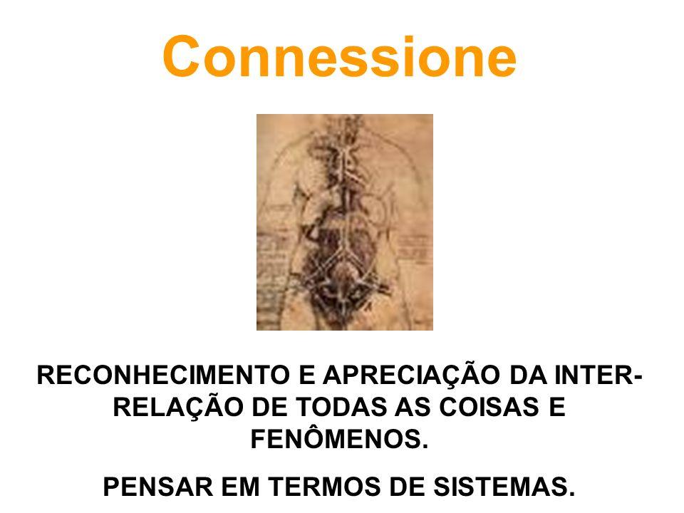 Connessione RECONHECIMENTO E APRECIAÇÃO DA INTER- RELAÇÃO DE TODAS AS COISAS E FENÔMENOS. PENSAR EM TERMOS DE SISTEMAS.