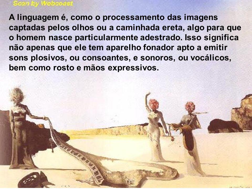 A linguagem é, como o processamento das imagens captadas pelos olhos ou a caminhada ereta, algo para que o homem nasce particularmente adestrado. Isso