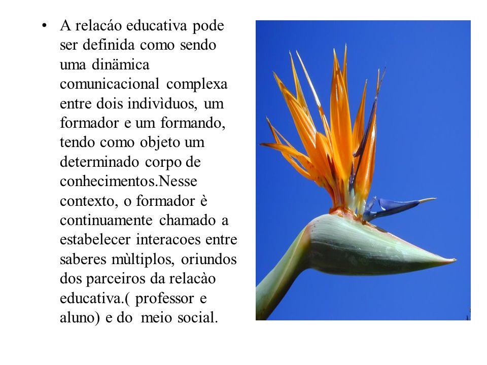 A relacáo educativa pode ser definida como sendo uma dinämica comunicacional complexa entre dois indivìduos, um formador e um formando, tendo como obj