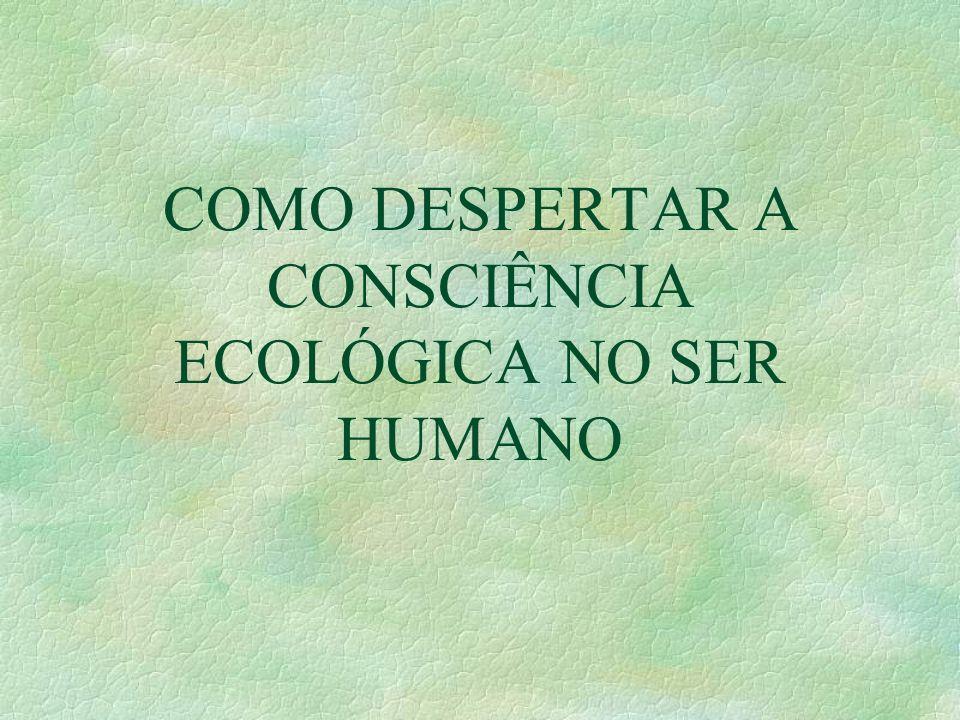 COMO DESPERTAR A CONSCIÊNCIA ECOLÓGICA NO SER HUMANO