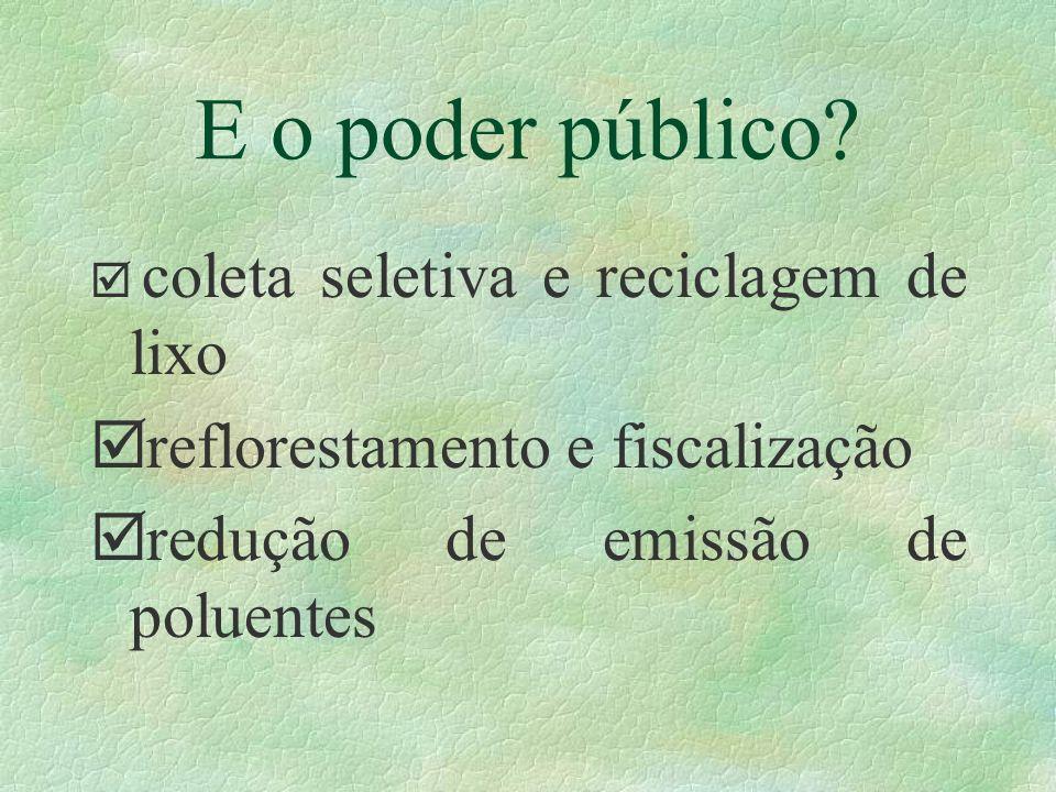 E o poder público? þ coleta seletiva e reciclagem de lixo þ reflorestamento e fiscalização þ redução de emissão de poluentes